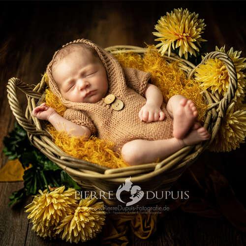Babybauch Neugeborenen Fotografie - Pierre Dupuis - Fotografen aus Hochtaunuskreis ★ Jetzt Angebote einholen