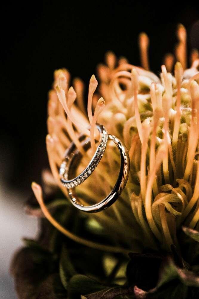the rings / details (wellengang Hochzeits- und Familienfotografie)