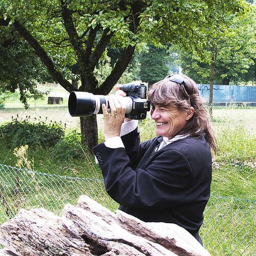 HARTMANN Fotodesign - Stefanie Hartmann - Fotografen aus Tübingen ★ Angebote einholen & vergleichen