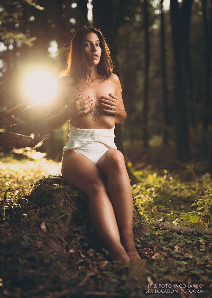 Teilakt im Wald (IT & FOTO Ingo Janek)