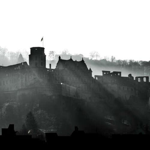 Daniel Ellwanger - Fotografen aus Heidelberg ★ Angebote einholen & vergleichen