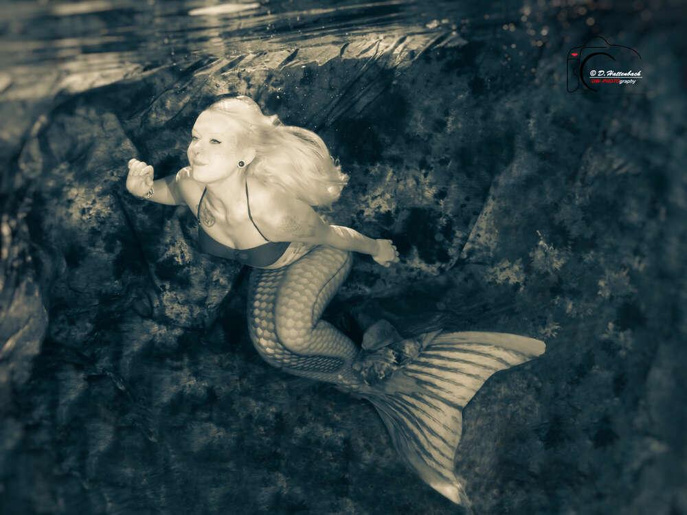 Meermaid (FFP-Fotofilmproduktionen)