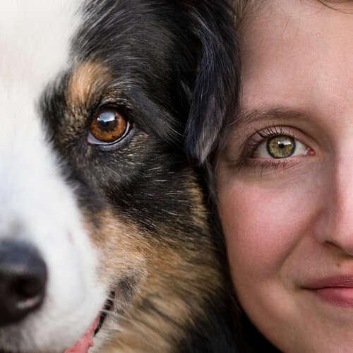 creARTive4paws - Tierfotografie - Sara Franziska Heindorf - Fotografen aus Goslar ★ Angebote einholen & vergleichen