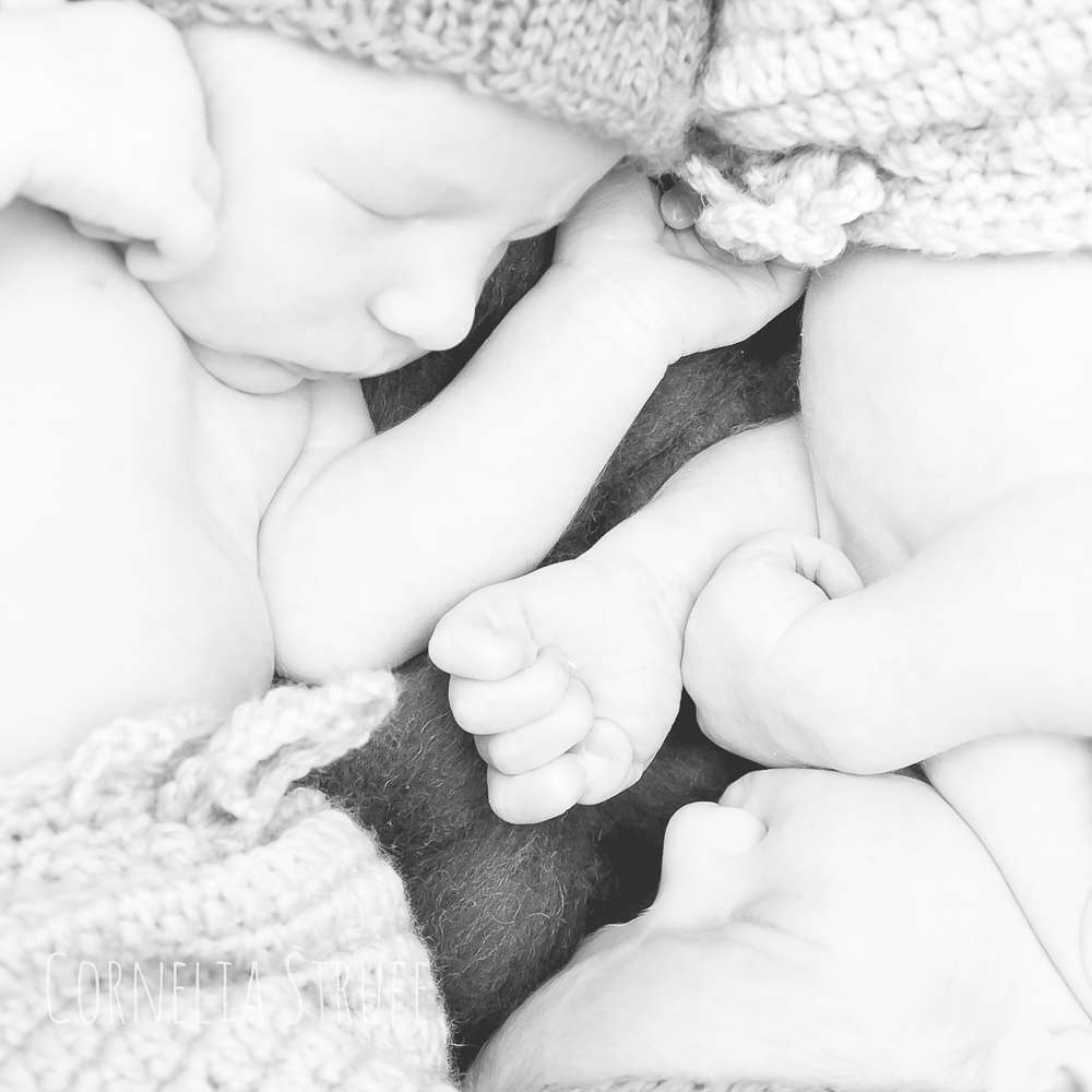 Zwillinge (Cornelia Strufe Familienfotografie und Design)