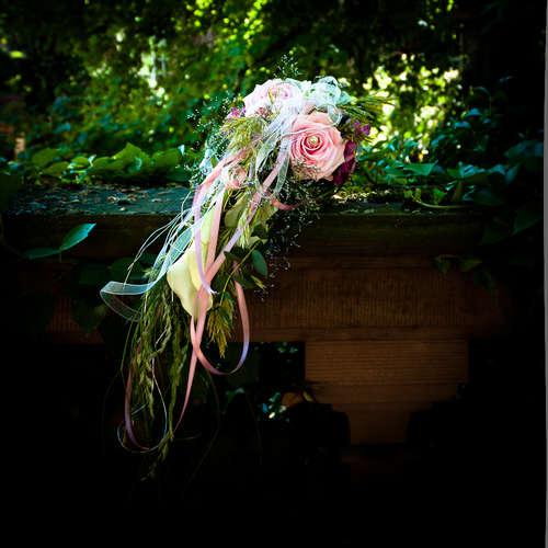 WERNER SCHIFFNER PHOTOGRAPHIE - Werner Schiffner - Hochzeitsfotografen aus Alzey-Worms ★ Preise vergleichen