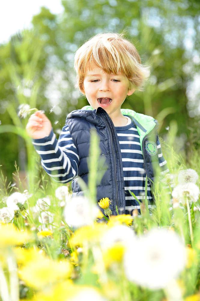Kind im Pusteblumenfeld / Pusteblume (EE fotografie)