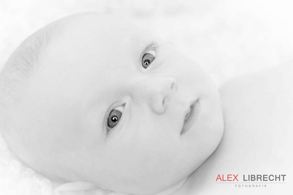 Baby&Kinder (Alex Librecht Fotografie)