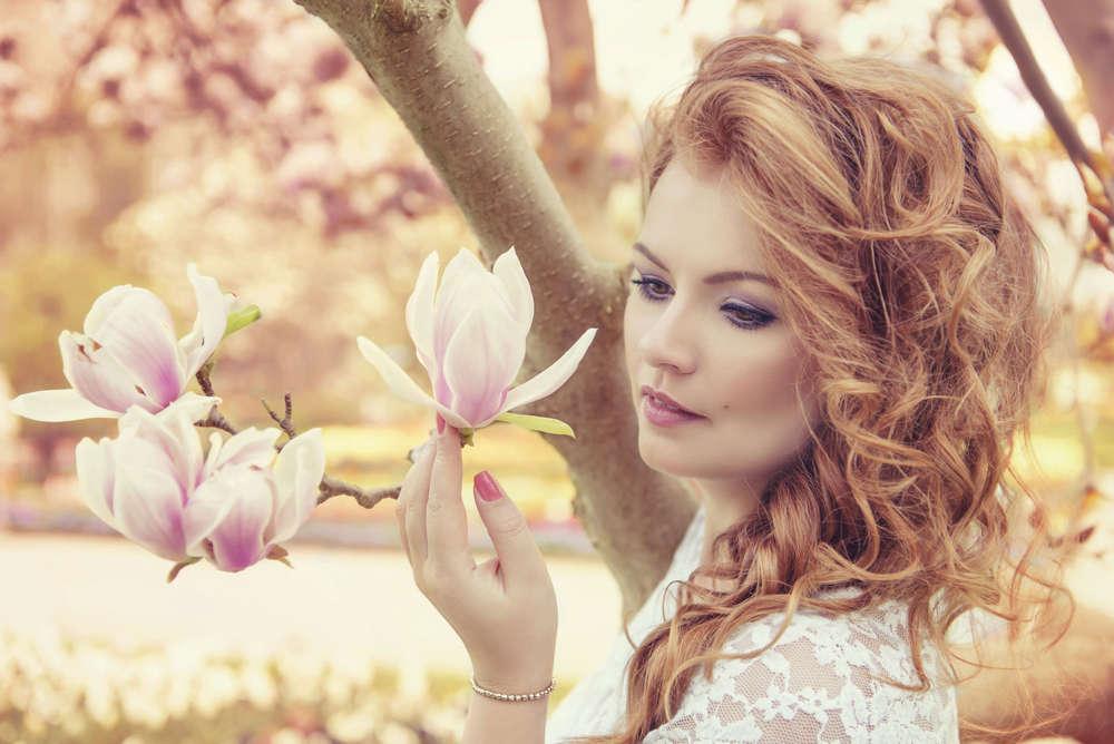 Magnolia Beauty (HoneyLightSolutions)