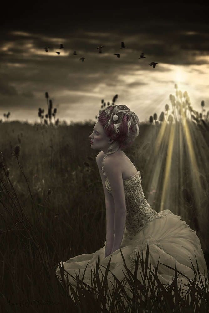 Marie-Antoinette Inspired (HoneyLightSolutions)