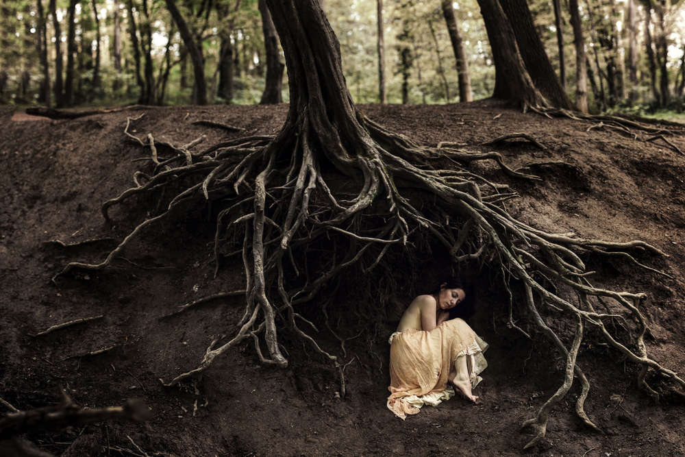 shelter (Katja Kemnitz)