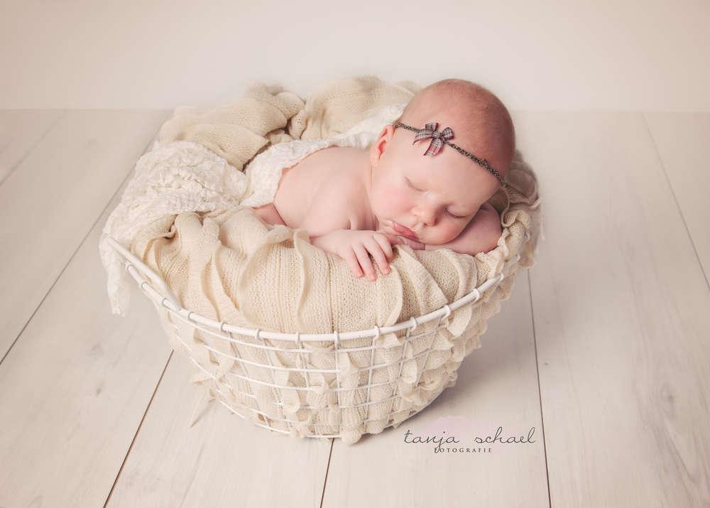 Newborn (Tanja Schael Fotografie)