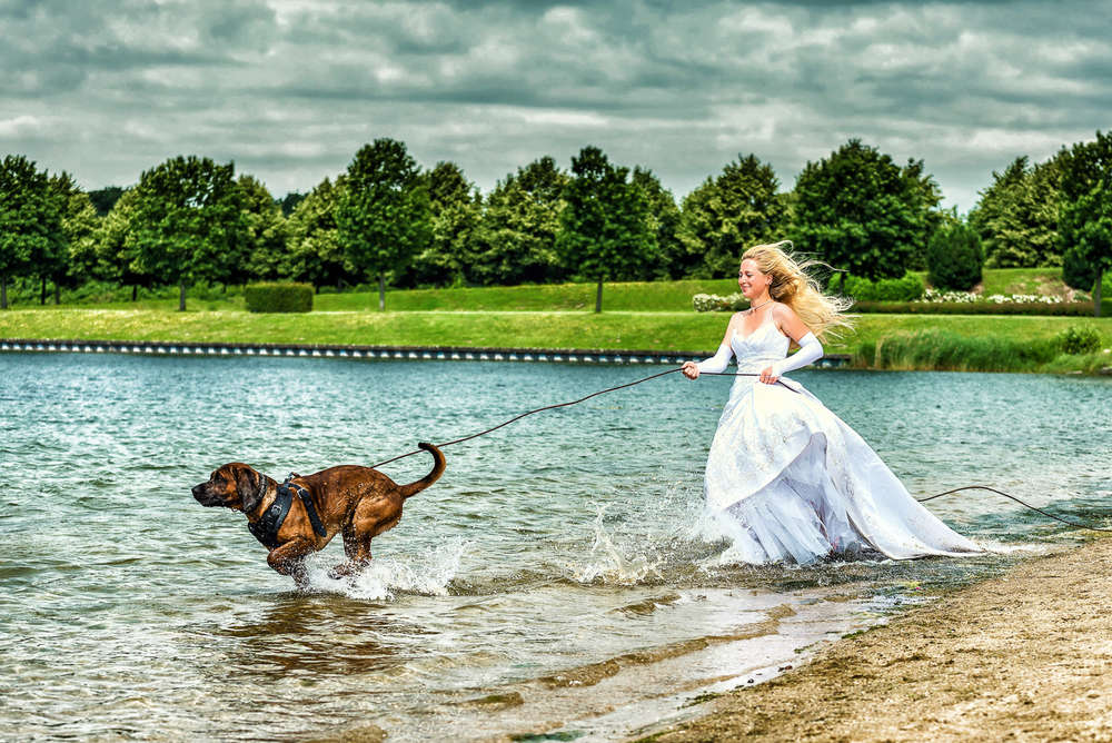 Trash the wedding dress /
