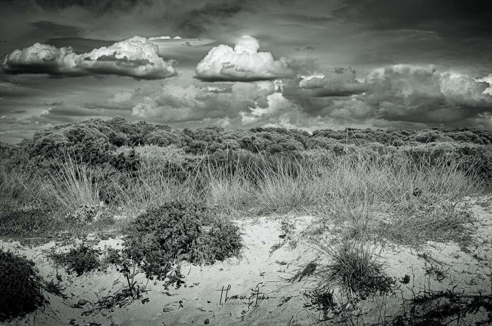 Thomas Jahn Photography (Thomas Jahn Photography)