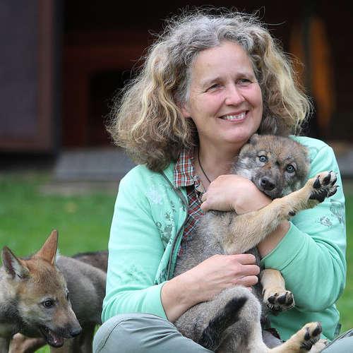 Tierfotografie Juliane Meyer - Juliane Meyer - Fotografen aus Harburg ★ Angebote einholen & vergleichen