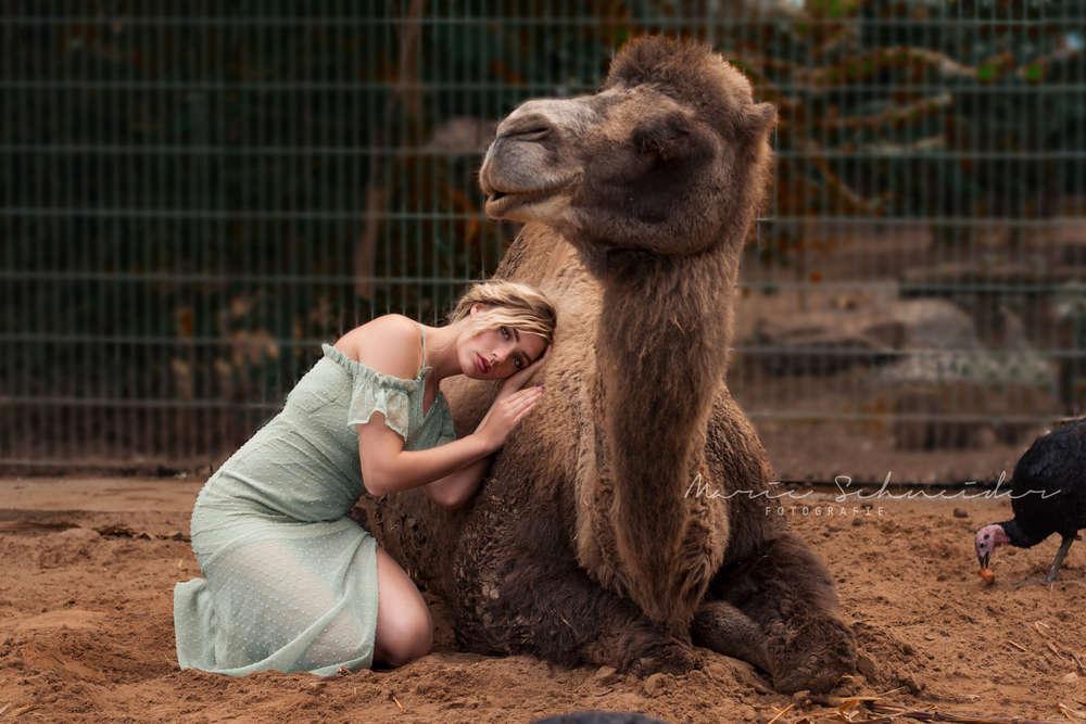 Kamel (Marie Schneider)