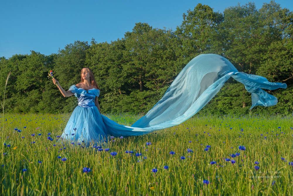 Cinderella (DESIGN BÜRO)