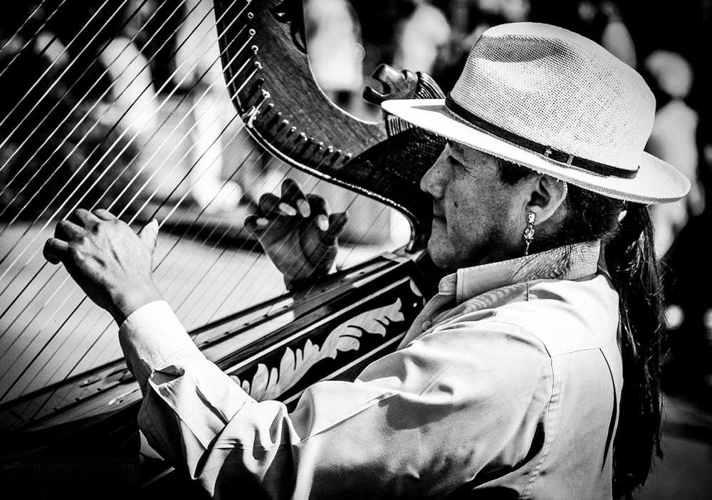 Der Harfenspieler / Konzert-Fotografie (YAAAA MANN AGENCY)