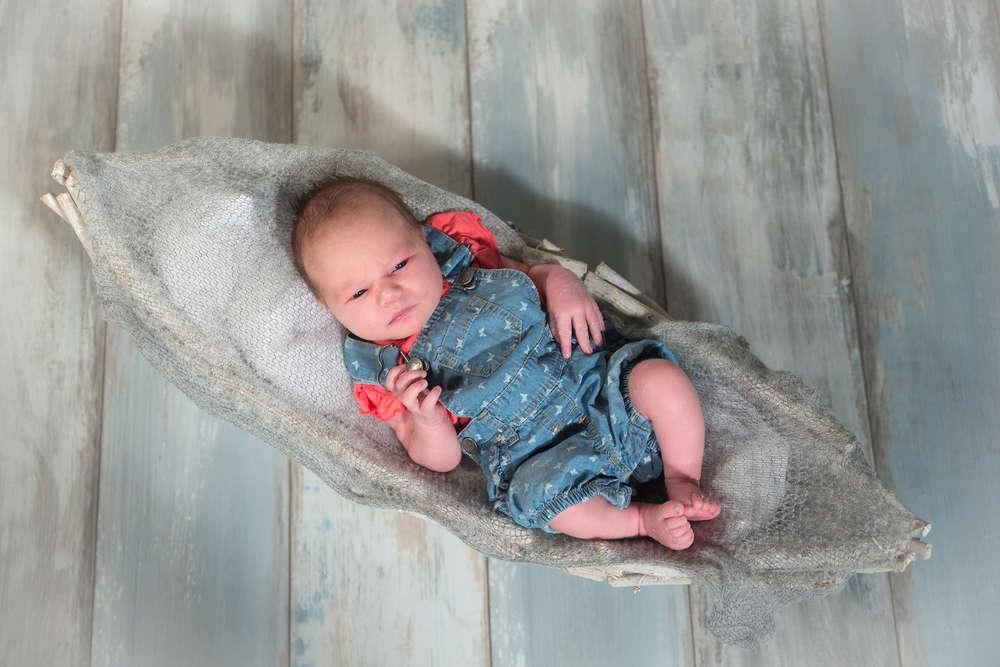 Newborn /