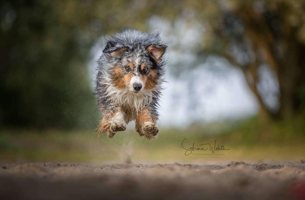 Ein Hüpferle / abgehoben mal anders (Sabrina Wobith Photography - FotosVonMaja)