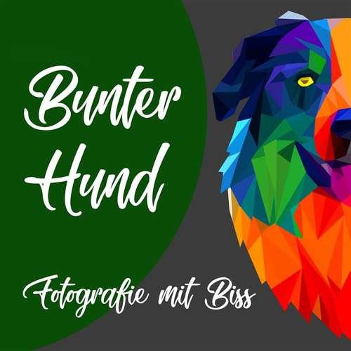 Bunter Hund- Fotografie mit Biss - Rafael Kasper Katharina Hornung - Fotografen aus Rastatt ★ Angebote einholen & vergleichen