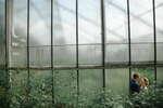 Viktorfoto - Viktor Gottselig - Die besten Fotografen aus Segeberg ★ Preise vergleichen