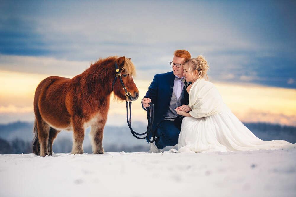 Hochzeit im Schnee mit Pony /