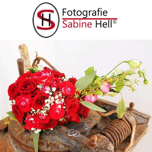 Fotografie Sabine Hell - Sabine Hell - Fotografen aus Hochtaunuskreis ★ Jetzt Angebote einholen